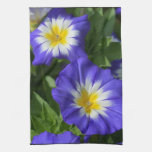 Blue and Yellow Morning Glories Towels