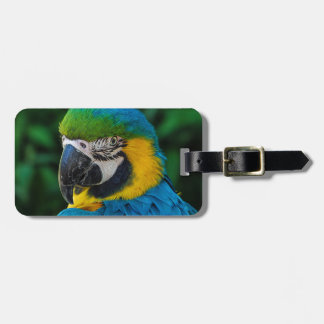 Blue and Yellow Parrot Bag Tags
