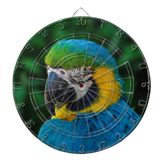 Blue and Yellow Parrot Dart Board