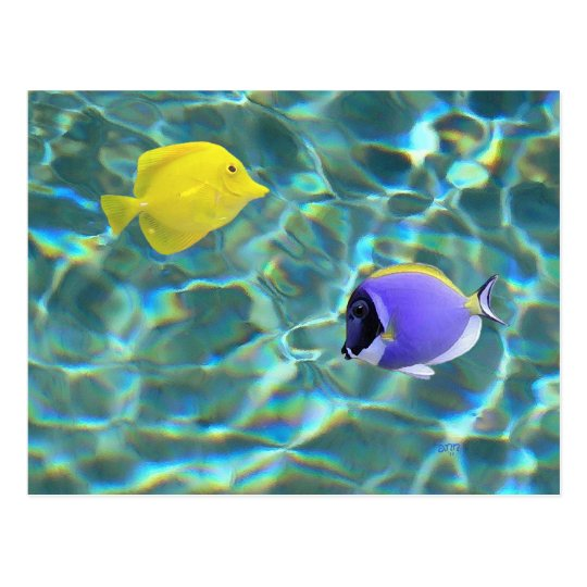 Blue and Yellow Tang in Water Postcard