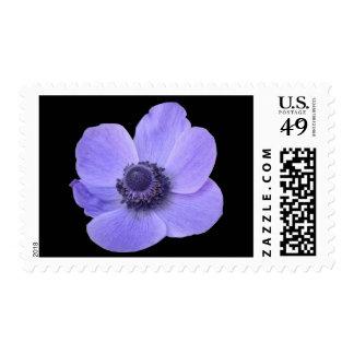 Blue Anemone Flower US Postage Stamp