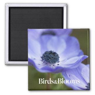 Blue Anemone Magnet