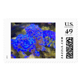 Blue Anenome and Coral Postage