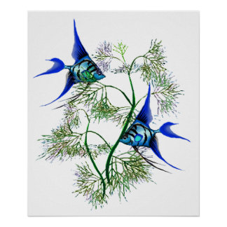 Blue Angelfish in Plants Poster