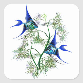 Blue Angelfish in Plants Square Sticker