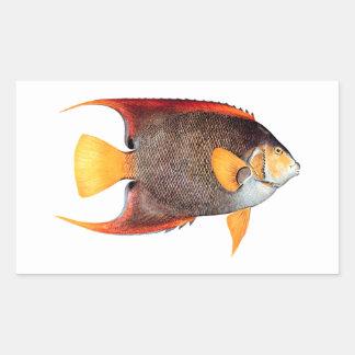 Blue Angelfish (saltwater) Rectangular Sticker