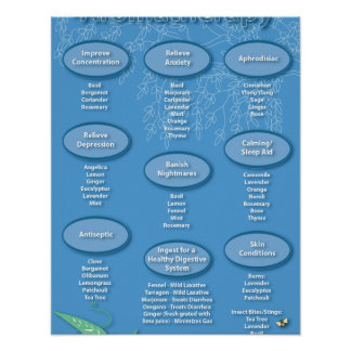 Blue Aromatherapy Chart Poster