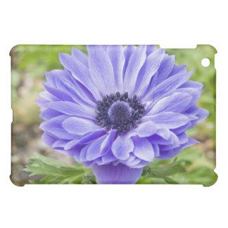 Blue Aster iPad Case