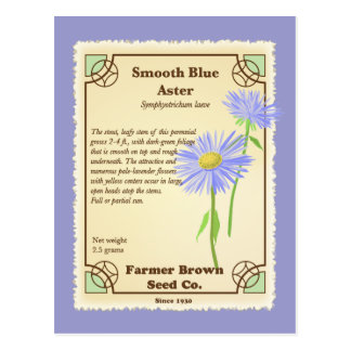 Blue Aster Seed Packet Postcard