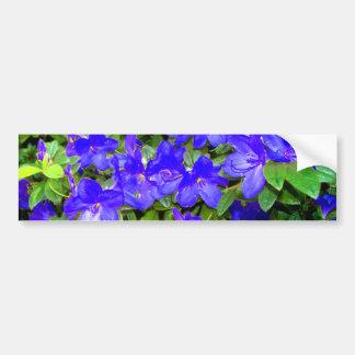 Blue Azalea Flowers Bumper Sticker