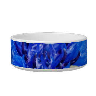 Blue Bachelor Button Pet Bowl