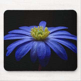 Blue Balkan Anemone flower Mousepads