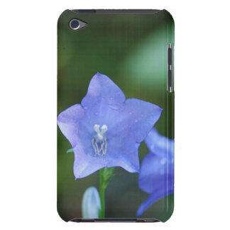 Blue Balloon Flowers iTouch Case iPod Touch Cases