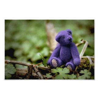Blue Bear Photo Print