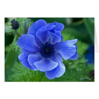 Blue Beauty Card
