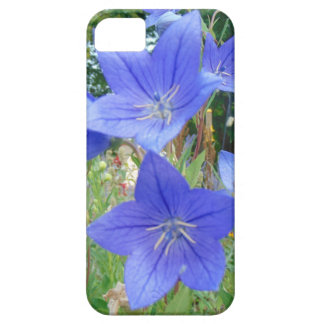 Blue bellflower, white stamins iPhone 5 cases