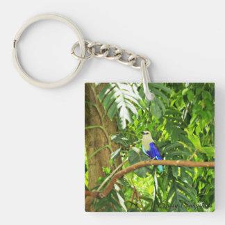 Blue Bellied Roller Keychain