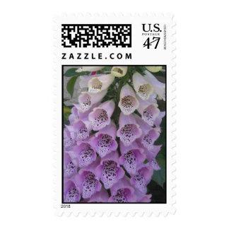Blue Bells Postaage Stamps
