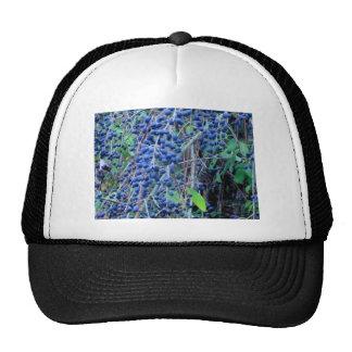 Blue Berries 2 Trucker Hat