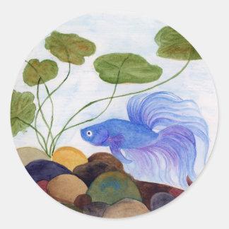 Blue Betta Fish Classic Round Sticker