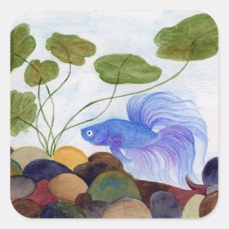 Blue Betta Fish Square Sticker