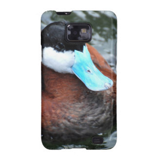 Blue Billed Duck Samsung Galaxy Case Samsung Galaxy SII Cover