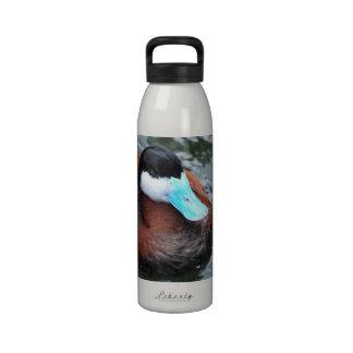 Blue Billed Duck Water Bottle