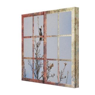 Blue Bird in Window Canvas Print