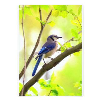 Blue Bird Invitation
