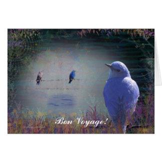 Blue Bird of Happiness Greeting Cards Birthday +++