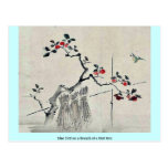 Blue bird on a branch of a fruit tree post card