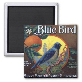 Blue Bird Orange Crate Label Magnet