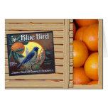 Blue Bird Oranges Card