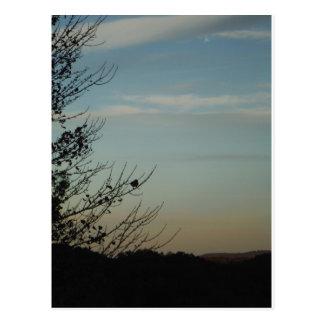 Blue Bird silhouette Powder Blue Sky Postcard