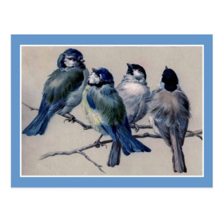 Blue Birds on a Branch Postcard