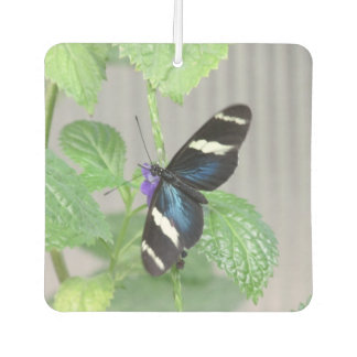 Blue, Black and White Butterfly Car Air Freshener
