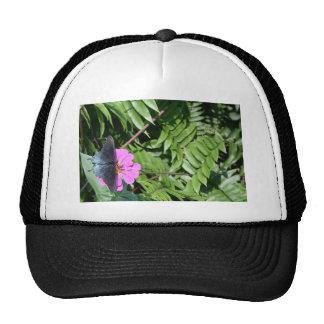 Blue black butterfly on purple flower, green leaf trucker hat