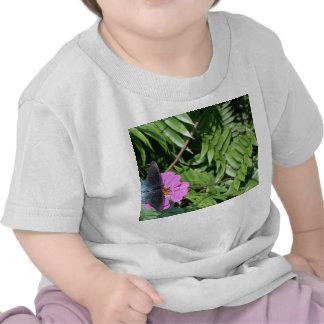 Blue black butterfly on purple flower, green leaf t-shirts