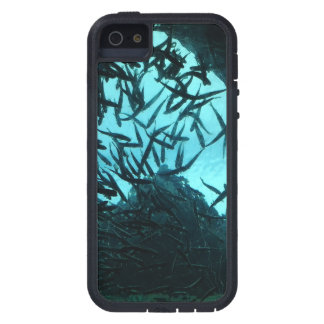 Blue Black Fish iPhone 5/5S, Tough Xtreme Case For iPhone SE/5/5s