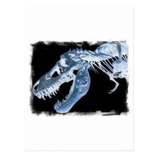 Blue & Black T-Rex X-Ray Bones Photo Postcard