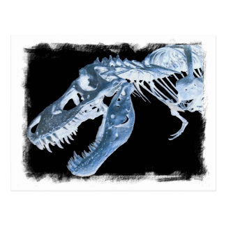 Blue & Black T-Rex X-Ray Bones Photo Postcard