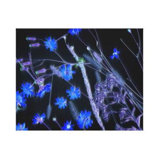 Blue Black wildflower scan design Canvas Print