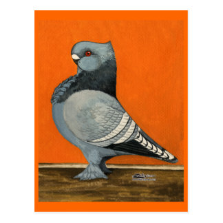 Blue Blondinette Pigeon Post Cards