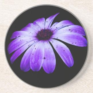 Blue Bloom Sandstone Coaster