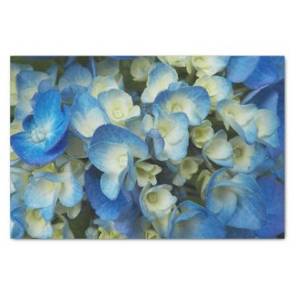 Blue Blossoms Floral Tissue Paper
