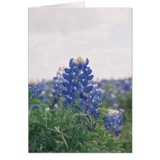 Blue Bonnet Card