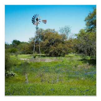 blue bonnet farm poster