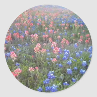 Blue Bonnets and Indian Paint Brushes Sticker