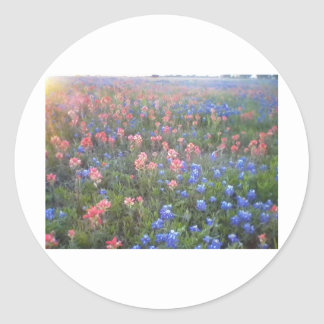 Blue Bonnets and Indian Paint Brushes Round Sticker