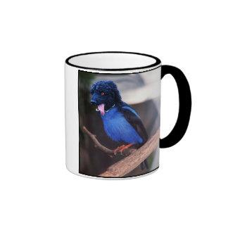 Blue boodle mug